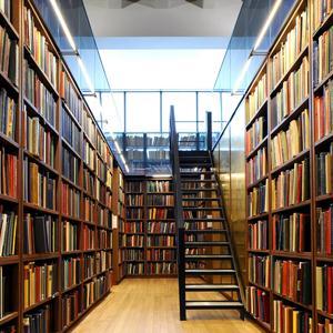 Библиотеки Старбеево